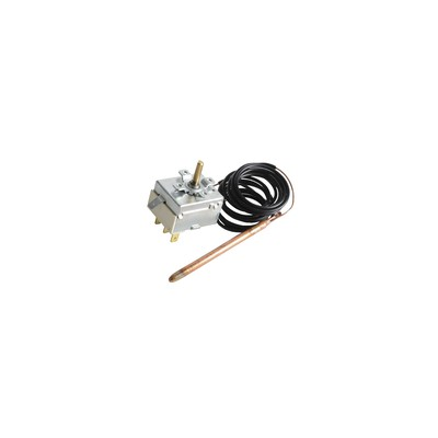 Thermostat ECS 24004 - RIELLO : 4035374